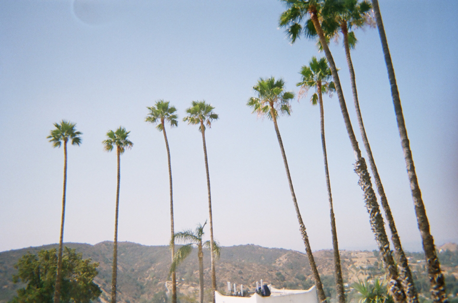 Palm Trees // Rooftops Pool Party
