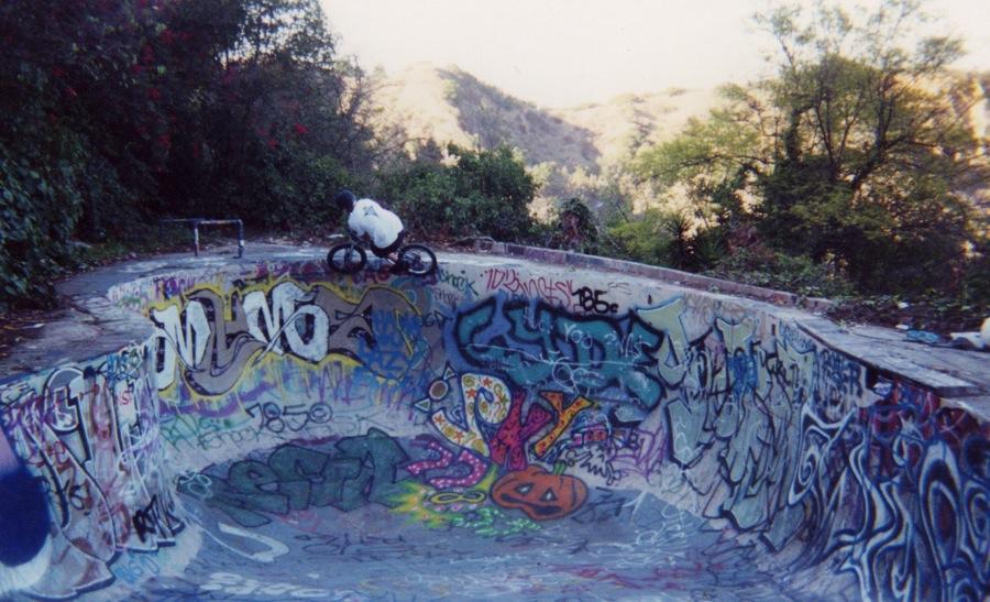 jungle-pool