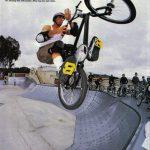 Sean Yarroll // Dirt Bros Cheese // 1994